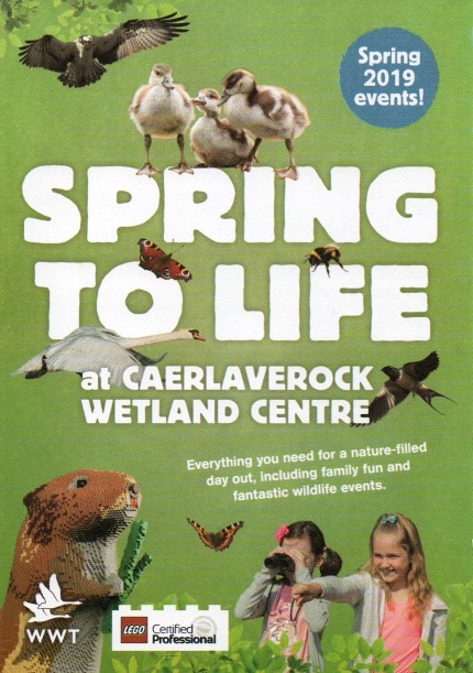 Caerlaverock Wetland Centre 1